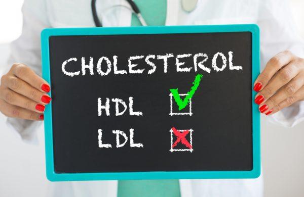 cholestérol - HDL et LDL