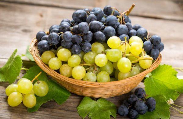 raisin fruits d'automne